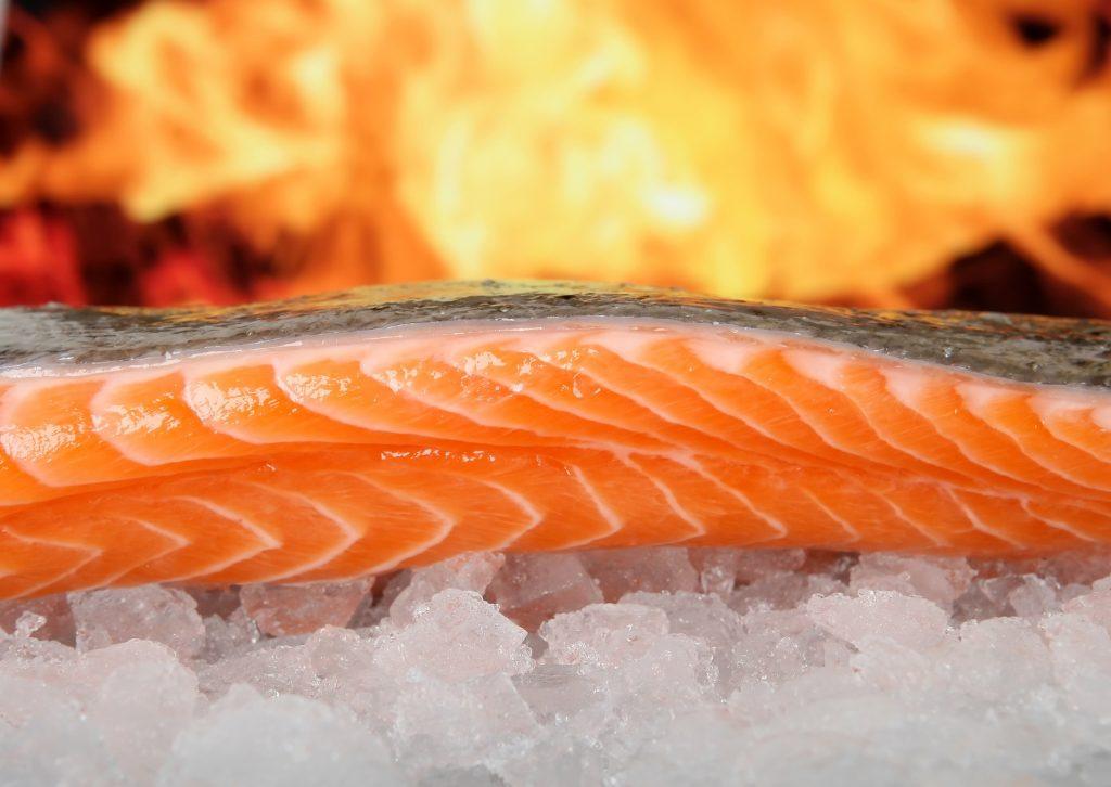 Omega-3 mastné kyseliny losos