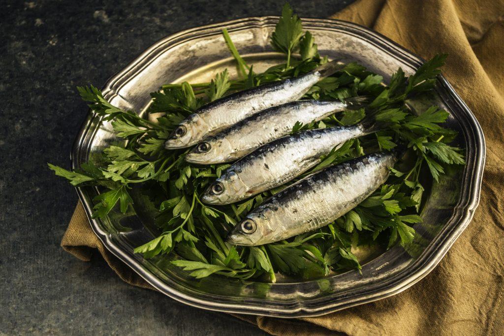 sardinky